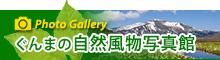 ぐんまの自然風物写真館
